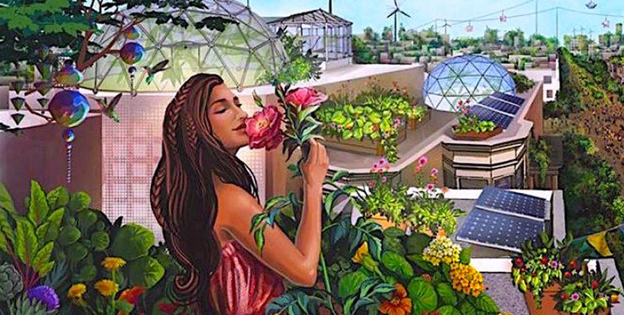 Urbano vrtnarjenje 2